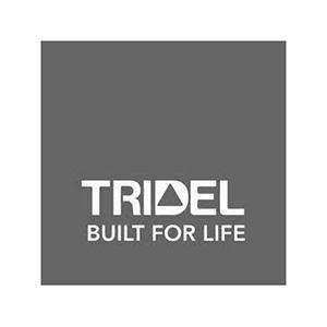 Tridel Logo Greyscale -- Clients